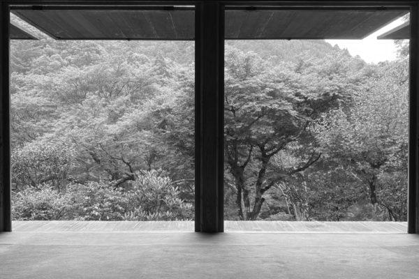 京都 栂尾山 仁和寺 高山寺を訪ねて 明恵上人 鳥獣人物戯画 ゆかりの深山幽谷